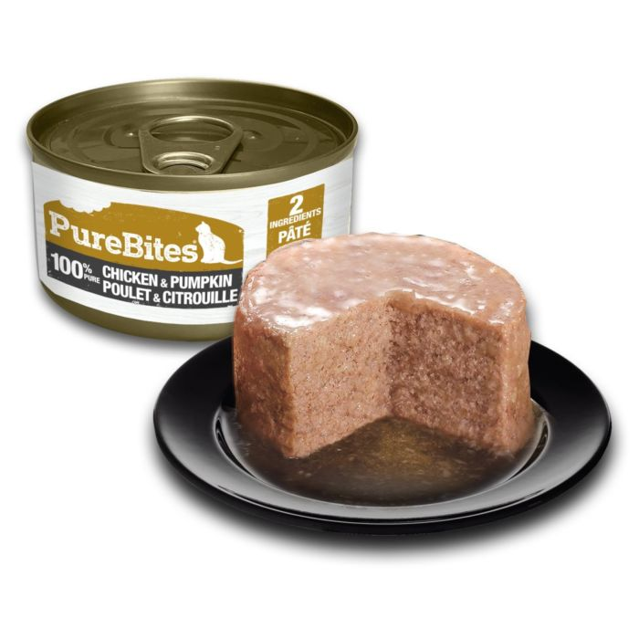 Front Shot Can With Plate Cat Paté Chicken and Pumpkin